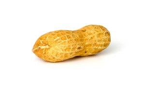 1-1193583744_peanut